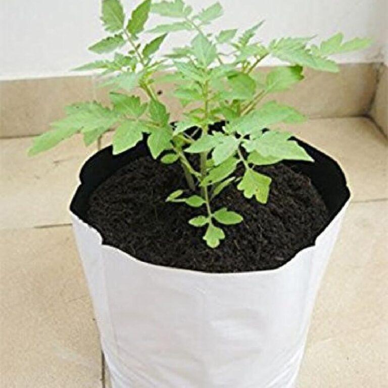 grow-bag1