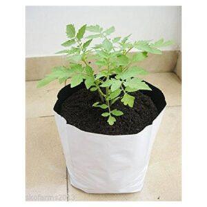 grow-bag2