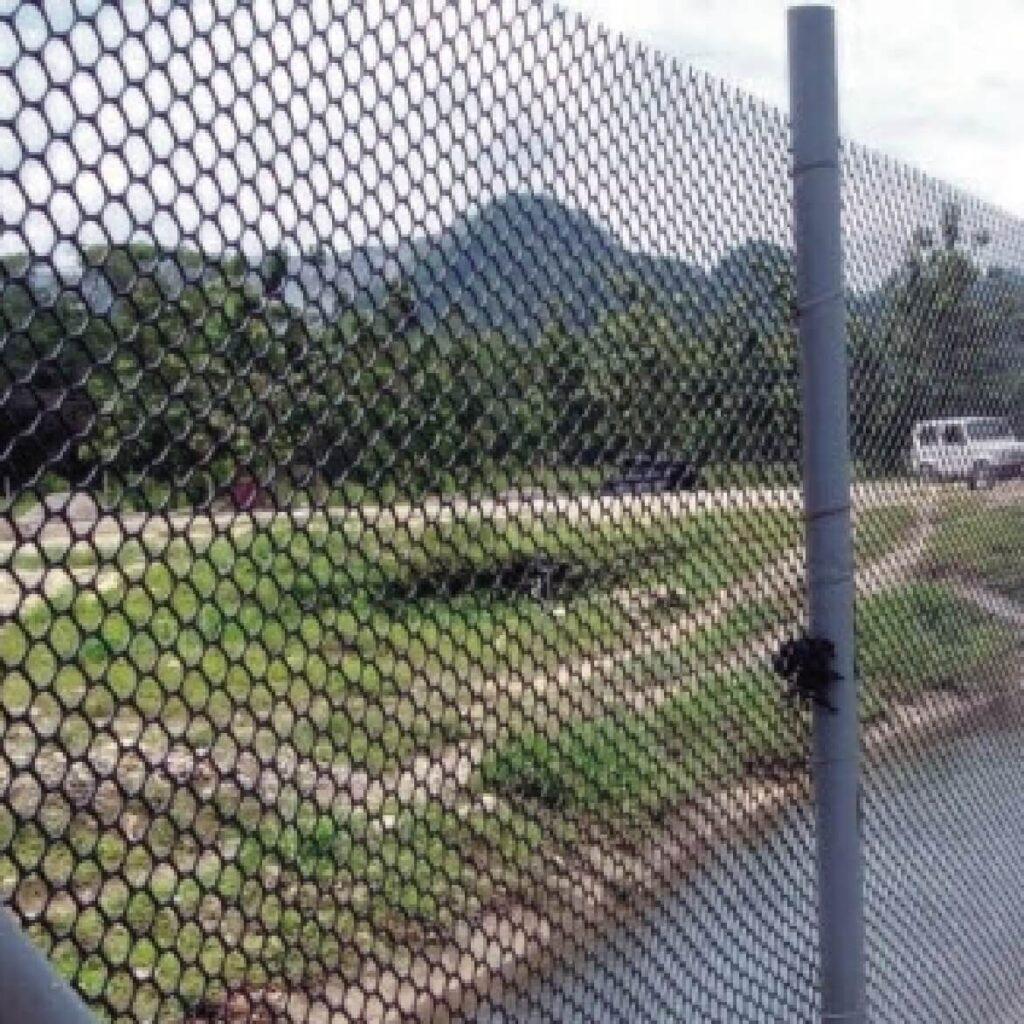 Monkey Fence